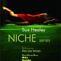 Sue Healey: Niche